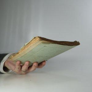 antikvární kniha Křižácká výprava francouzských hochů. Původní dějepisná povídka ze 13. století, neuveden