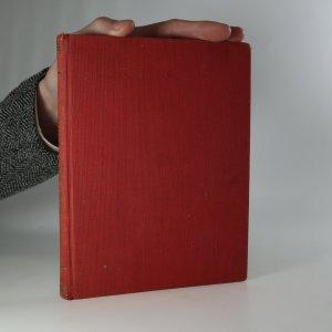 náhled knihy - Mlčící mstitel. Detektivní román