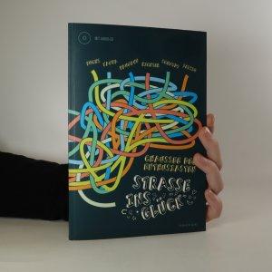 náhled knihy - Chaussee der Enthusiasten. Straße ins Glück (bez CD)
