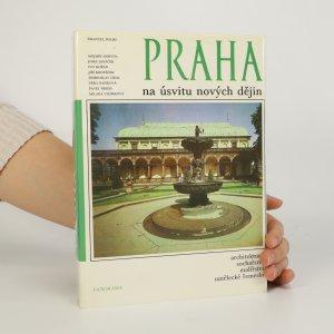 náhled knihy - Praha na úsvitu nových dějin. Architektura, sochařství, malířství, umělecké řemeslo