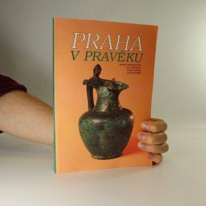 náhled knihy - Praha v pravěku