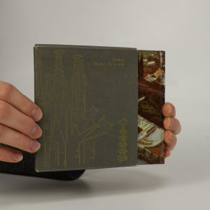 náhled knihy - Tisíciletý Pražský hrad