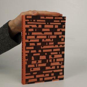 náhled knihy - Reportáž z 21. století