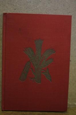 náhled knihy - Svítání a svět : básně