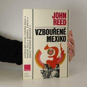 náhled knihy - Vzbouřené Mexiko