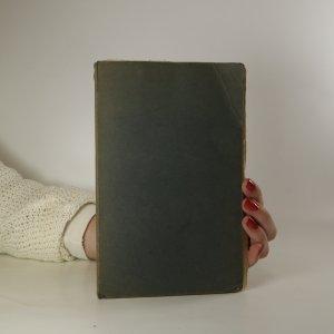 náhled knihy - Kat a blázen