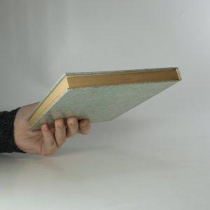 antikvární kniha Pochybné podniky, 1995