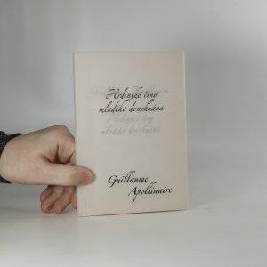 náhled knihy - Hrdinské činy mladého donchuána