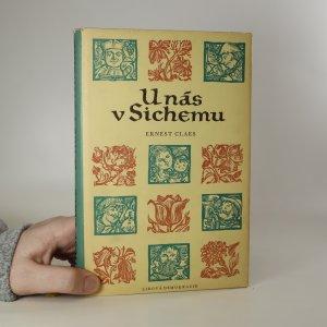 náhled knihy - U nás v Sichemu