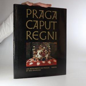 náhled knihy - Praga caput regni. Les monuments de Prague et ses environs