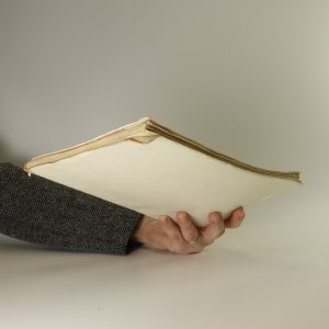 antikvární kniha Bohyně čeká. Traktát o češtině, 1945