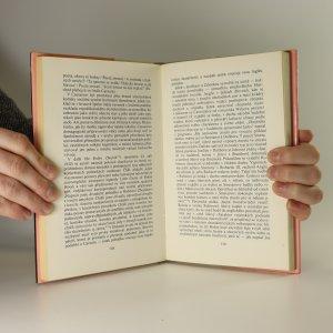antikvární kniha Zpráva o Osvobozeném divadle, 1982