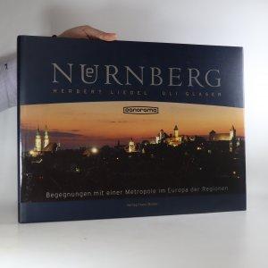 náhled knihy - Nürnberg Panorama