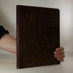 náhled knihy - Album moderních románů a povídek. Ročník 1895