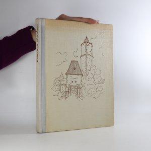náhled knihy - Kamenná minulost. Procházky po hradech a zámcích v českých zemích
