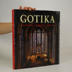 náhled knihy - Gotika. Architektura, sochařství, malířství