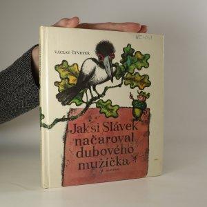 náhled knihy - Jak si Slávek načaroval dubového mužíčka