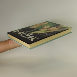 antikvární kniha Pasťák, 2011