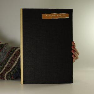 náhled knihy - Holandské zátiší. Prameny, sbírka dobrého umění, svazek 54