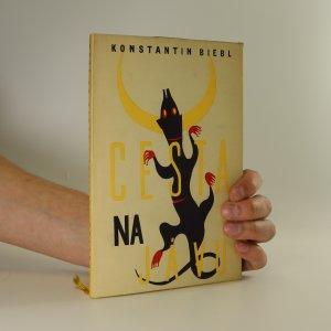 náhled knihy - Cesta na Jávu