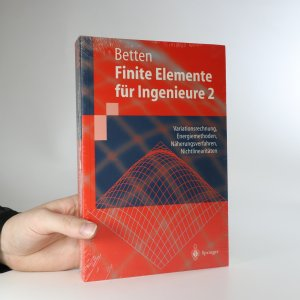 náhled knihy - Finite Elemente für Ingenieure 2