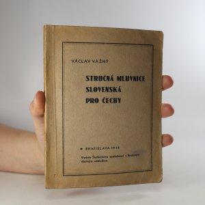 náhled knihy - Stručná mluvnice slovenská pro Čechy