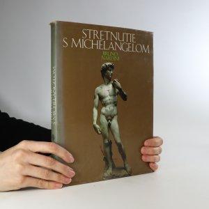 náhled knihy - Stretnutie s Michelangelom