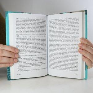 antikvární kniha Skleněná stěna. Válka pokračuje, neuveden