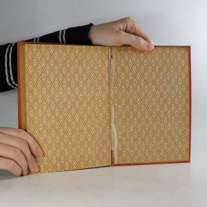 antikvární kniha Tajemství pralesa. Osm set mil na řece Amazonce, 1923