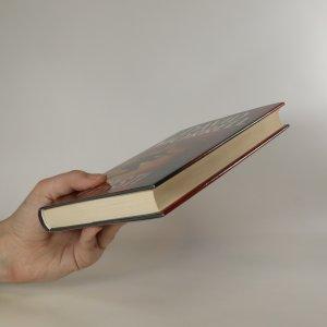 antikvární kniha V pasti, 2008
