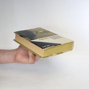 antikvární kniha Nadějné vyhlídky, 1965