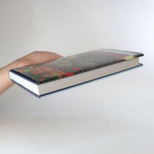 antikvární kniha Démoni nečasu, 2007