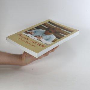 antikvární kniha Zrcadlo mé duše, 2004